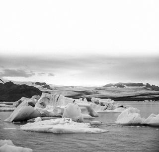 기후위기, 불평등, 기술혁신 속에서 2020년대를 생존하기